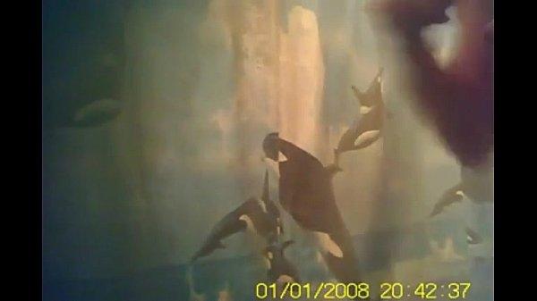 Видео снизу женского туалета скрытая камера